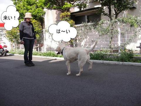 run0410-7.JPG