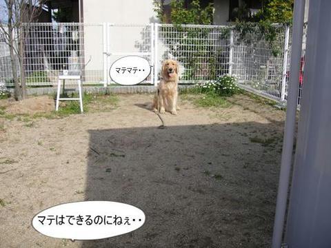 run0410-14.JPG