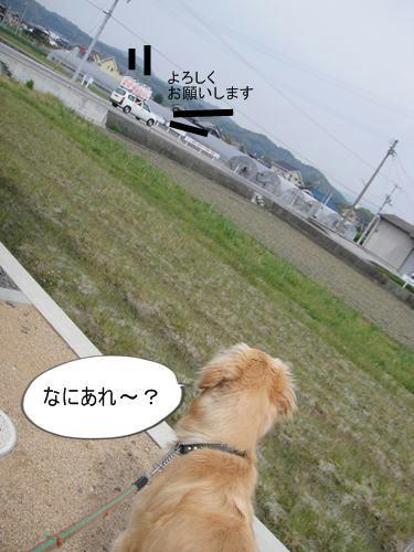 run0418-11.JPG