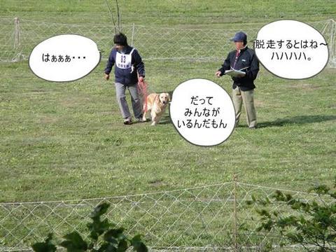 run0429-13.JPG