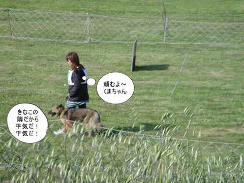 run0430-4.JPG
