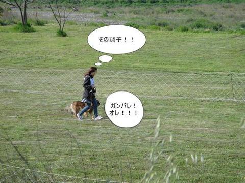 run0430-5.JPG