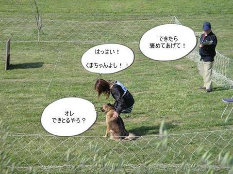 run0430-6.JPG
