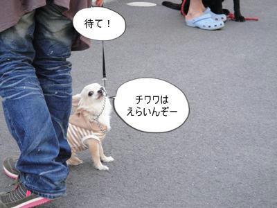 run0502-9.JPG