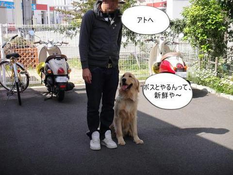 run0508-8.JPG