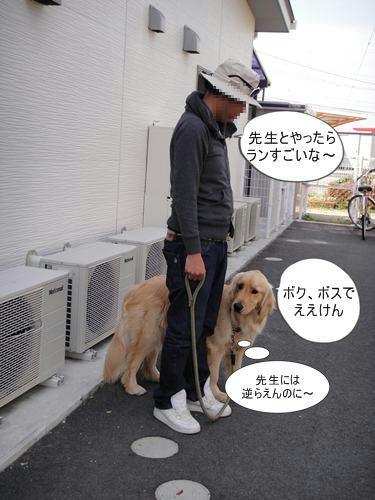 run0508-11.JPG