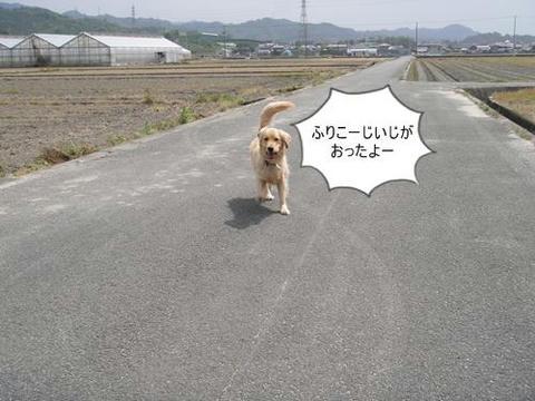 run0509-8.JPG