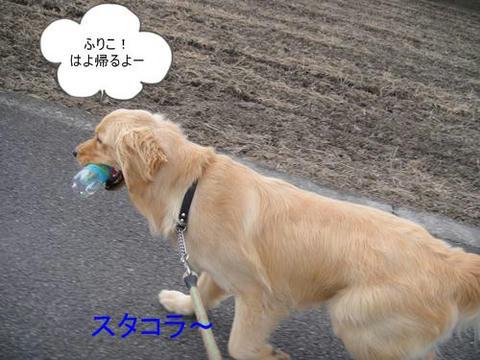 run0511-5.JPG