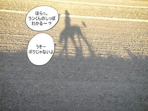 run0526-5.JPG