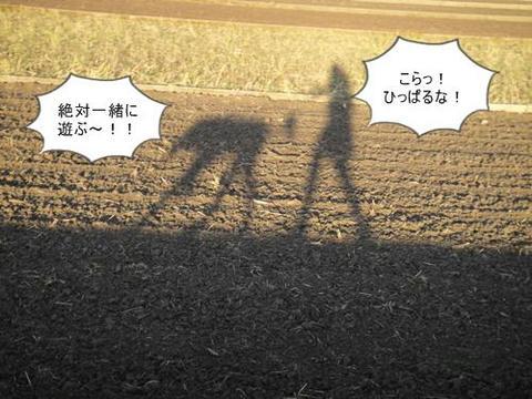 run0526-6.JPG