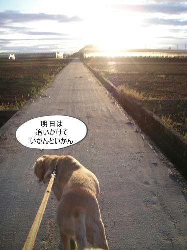 run0526-9.JPG