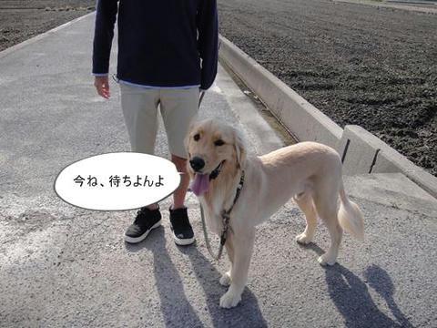 run0531-1.JPG