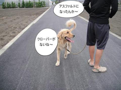 run0613-9.JPG