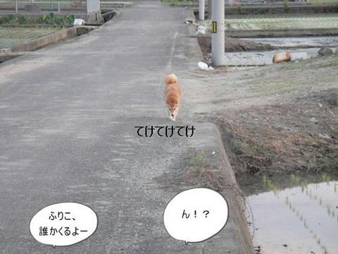 run0614-1.JPG