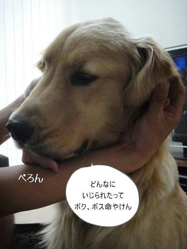 run0615-4.JPG