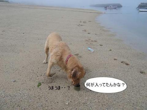 run0620-6.JPG