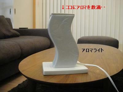 run0621-1.JPG