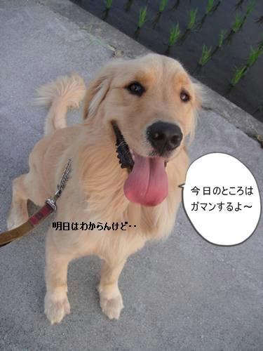 run0630-4.JPG