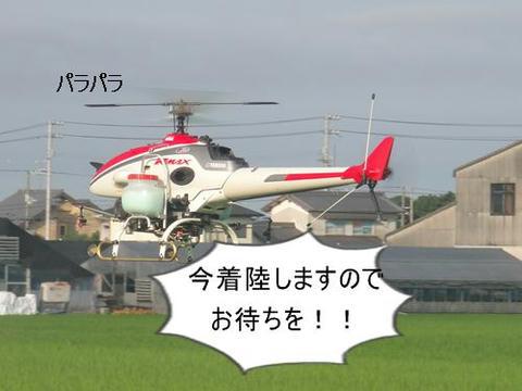 run0723-2.JPG