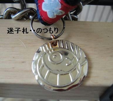 run0724-11.JPG