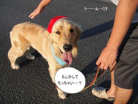 run0727-4.JPG