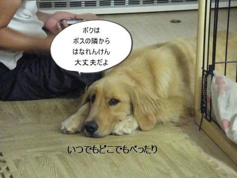run0906-1.JPG