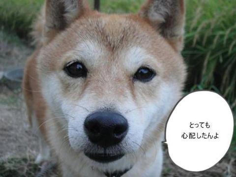 run0906-3.JPG