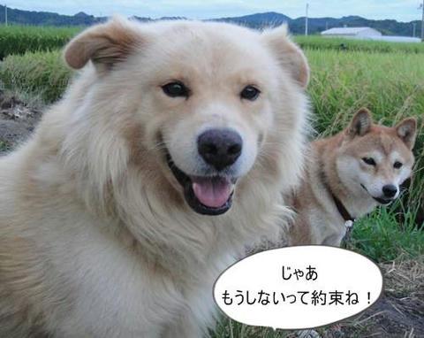 run0906-7.JPG