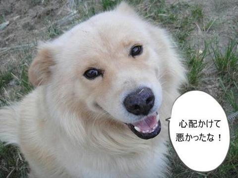 run0906-8.JPG