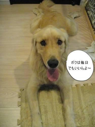 run0909-1.JPG