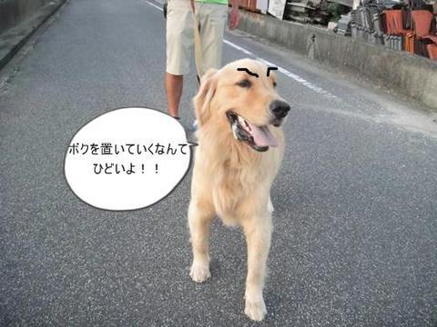 run0911-8.JPG