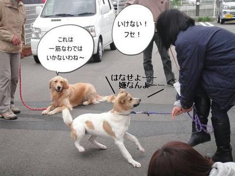 run1030-3.JPG