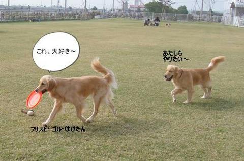 run1115-2.JPG