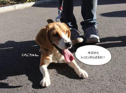 run1204-4.JPG