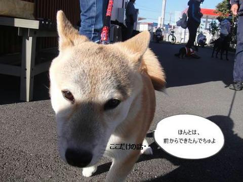 run1204-10.JPG