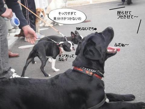run0219-4.JPG