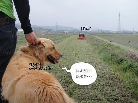 run20110421-2.JPG