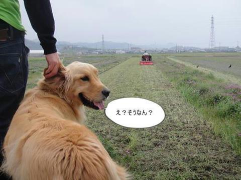 run20110421-3.JPG