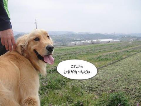 run20110421-4.JPG