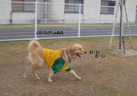 run20110422-1.JPG