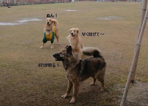 run20110422-3.JPG