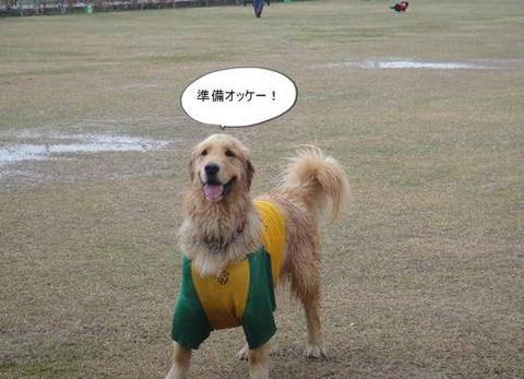 run20110422-4.JPG