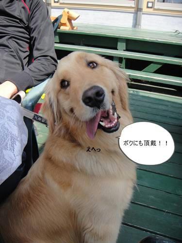 run20110426-7.JPG