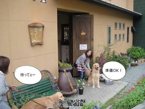 run20110426-10.JPG