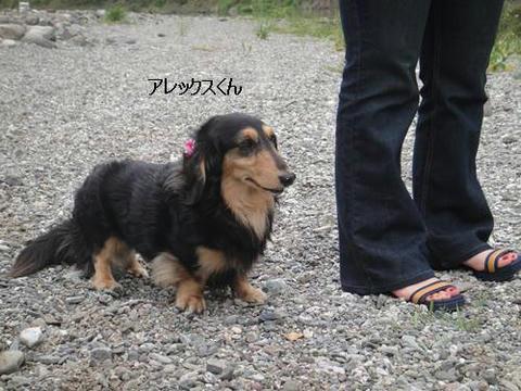 run20110504-5.JPG