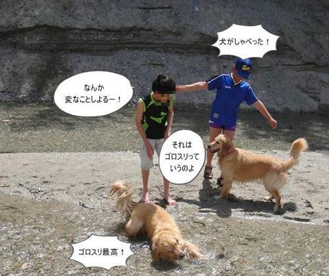 run20110507-9.JPG