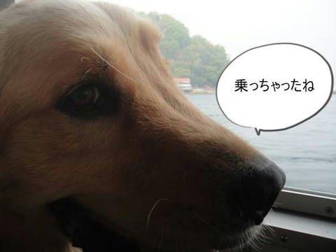 run20110518-7.JPG