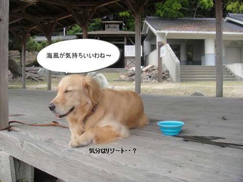 run20110518-10.JPG