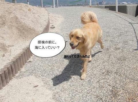 run20110519-5.JPG