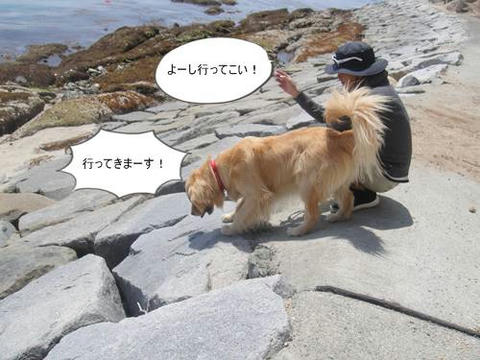run20110519-6.JPG